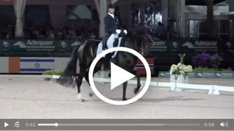 Watch Adrienne Lyle's plus-78% grand prix freestyle test. (Video courtesy of Richard's Equine Video.)