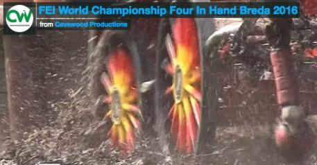 World Four-In-Hand Video 2016