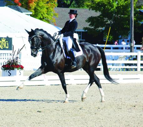 Canadian dressage Olympian Belinda Trussell makes Omega Alpha supplements part of her horses daily routine.