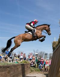 Buck Davidson and Ballynoe Castle RM (Mike McNally Photo)