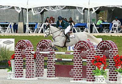 Cara Raether and Lyonell, owned by Trelawny Farm LLC, placed first in the $25,000 SmartPark Grand Prix, held Thursday, March 5, 2015, at HITS Ocala. (c) ESI Photography