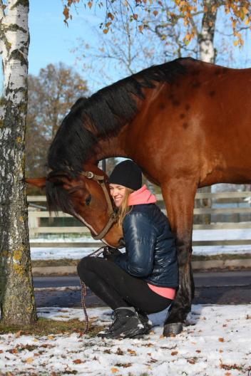 "Choice of Champions gives the gift of happy, healthy horses this holiday season through the ""Friends Helping Friends Campaign"" (Photo credit: Anatasija Popova)"