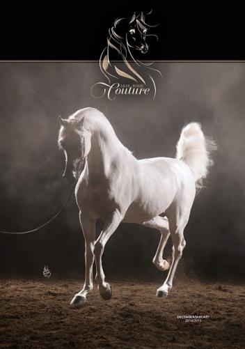 The December/January issue of Arab Horse Couture (Photo: courtesy of Laura J Brodzik)