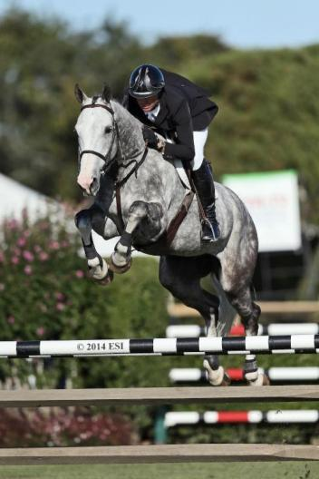 Devin Ryan rode Eddie Blue to win the $20,000 SHF Enterprises YJC 5-Year-old Final at the Hampton Classic.  (ESI Photo)