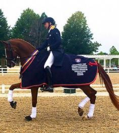Endel Ots and Everglades Dressage LLC's Donatus - 2014 Developing Grand Prix Champions