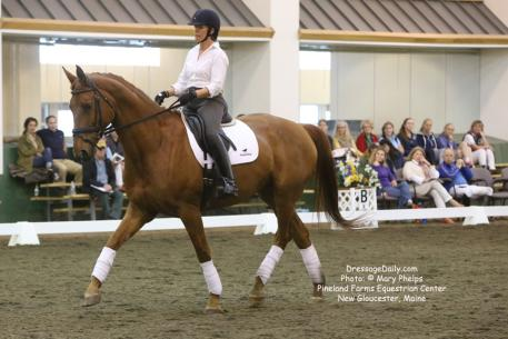 Doris Carlson and Wilhemena participated as both an 'L' judge attending lectures, and a rider working on on music selection and choreography for their first freestyle at Third Level.Photo: © Mary Phelps