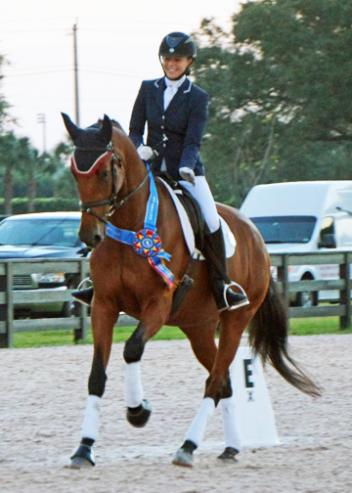 With her own 6-year-old mare, De Nada (Johnson x Kristna) Gwen Poulin qualified for the US Finals winning First Level Open Championships with a 74%