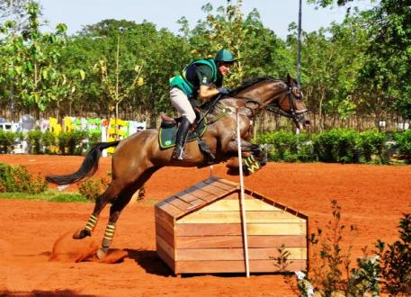 It was double gold for Henrique Pinheiro and Land Quenote Do Feroleto at the FEI South American Eventing Championship 2014 which drew to a close at Barretos in Brazil yesterday. (FEI/Claudia Lesconski)