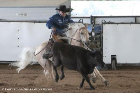 Jay Holmes is competing multiple horses throughout the weekend including Junkyard Cat, Senor Dun It and Ima Downtown