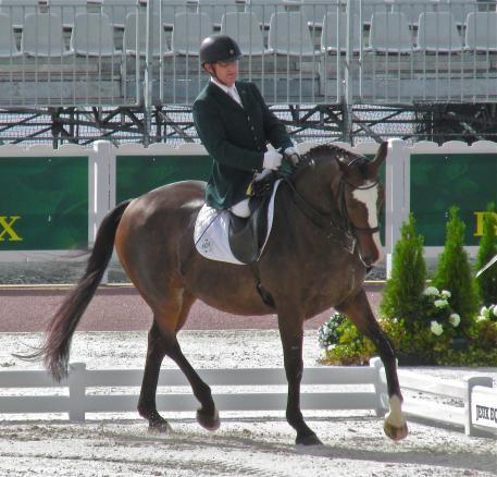 James and Orlando, a polished pair, at the 2014 Alltech FEI World Equestrian Games.