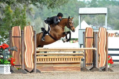 Jennifer Alfano and Maggie May claimed the High Performance Working Hunter Championship at HITS Ocala VI. Photo By: ESI