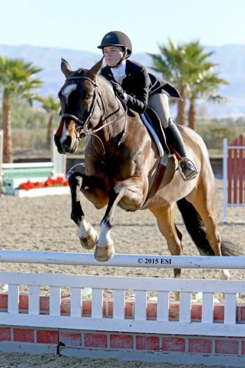 Jillian Stuart and Eduardo Leon's Amazing took first place in the ,500 Platinum Performance Hunter Prix on Friday, February 6, 2015, at HITS Thermal. (c) ESI Photography
