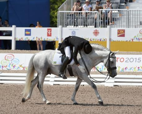 Joao Marcari (BRA) on the Lusitano Stallion Xamadospinhaus Photo: Diana De Rosa