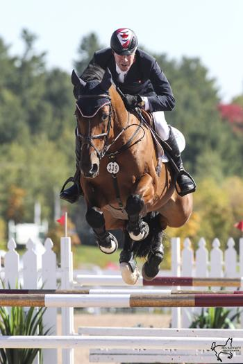 Ian Millar guided Star Power, owned by Team Works, to victory in the $35,000 CSI Caledon Cup, Phase I, presented by Peel Maryborough and Aviva Insurance, on September 26 at the CSI2*-W Canadian Show Jumping Tournament held at the Caledon Pan Am Equestrian Park in Palgrave, ON. Photo by Ben Radvanyi Photography