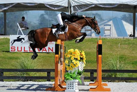 Kaitlin Campbell and her Rocky W win the $25,000 SmartPak Grand Prix at HITS Ocala Thursday, January 29, 2015. (c) ESI Photography