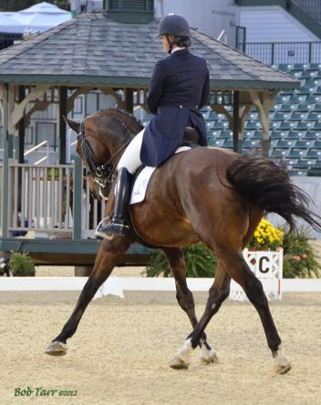 Six hundred dressage exhibitors will compete for championship honors this week at the Great American/USDF Region 2 Championship Show & KDA Fall Classic in Lexington, Kentucky.  Photo courtesy of Bob Tarr