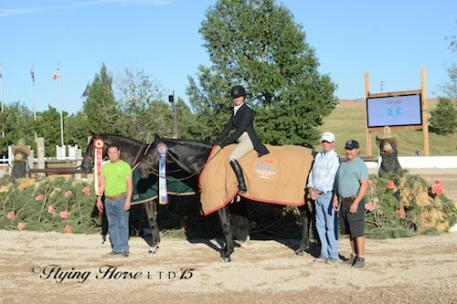 Kelley Farmer in her winning presentation with Mindful and Symbolic  along with Larry Glefke and their top grooms (Photo: Flying Horse Photography)