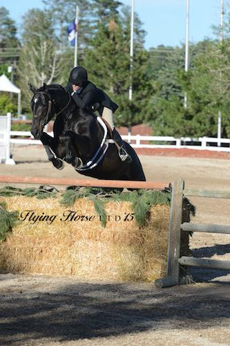 Kelley Farmer and Mindful (Photo: Flying Horse Photography)