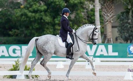 Exuding presence at Adequan/Global Dressage Festival 2014. Photo: Susan Stickle