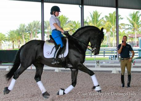 Rosie Simoes on Phil Bailey's Friesian Thys working with Robet Dover Photo: Sue Weakley