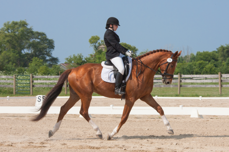 Young Rider Sarah Lipkowitz and her horse, Curry (Photo: Franke Photo Design, LLC.)