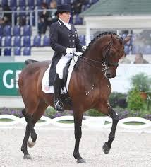 International Dressage Rider Shelly Francis