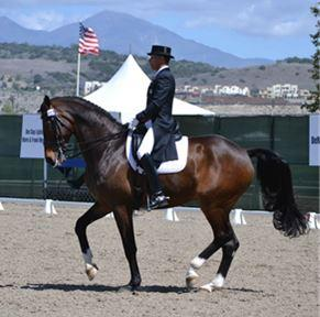 Steffen Peters is expected to return to California Dressage Productions' 2015 CDI series in an effort to earn an invitation to compete in Las Vegas for a chance at a second World Cup title. (Photo: Jennifer M. Keeler)