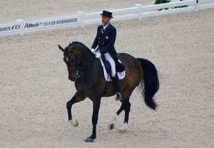 Bid on a lesson donated by Steffen Peters!
