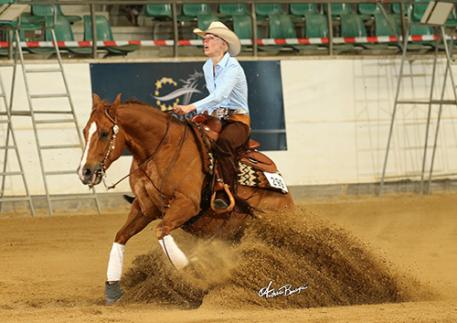 Royal Big Step BB, a 6-year-old gelding owned and shown by Dutch Suzanne Scharroo, took the lead in both classes