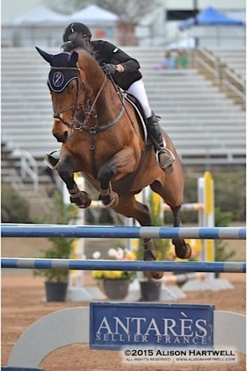 Sydney Long pilots Venchy De Bornival to the win in Saturday's $25,000 EMO Grand Prix