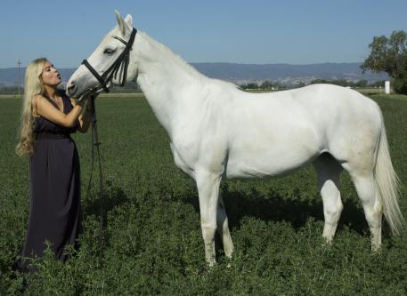 Theresa Clyde and her Warmblood mare, Pearl Bay.