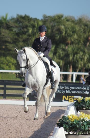 Baldor Interagro and Pia Aragão of Interagro Lusitanos earn first place in the FEI Prix St Georges
