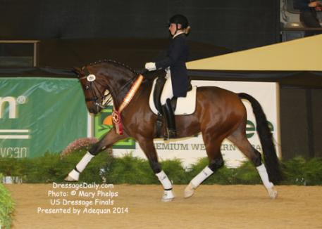 Lauren Thornlow, from Monroe, Washington on her own Royal Konig, an 11-year-old Oldenburg gelding (by Rubin-Royal out of Pica Ramira) win two reserves at US Dressage Finals