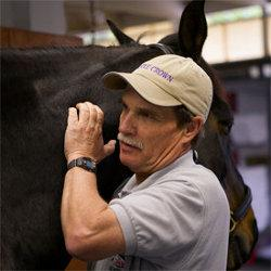 Equine Physiotherapist Tom Meyers. (Photo: Sheryl Ross)