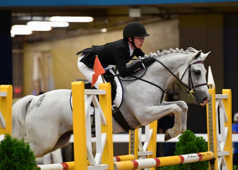 bailey-doloff-wishlea-star-dasher-pony-finals-2016.jpg