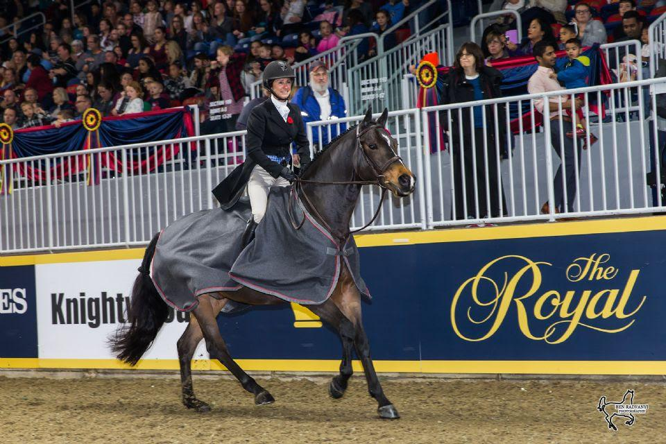 darcy-hayes-say-when-royal-horse-show-2017.jpg