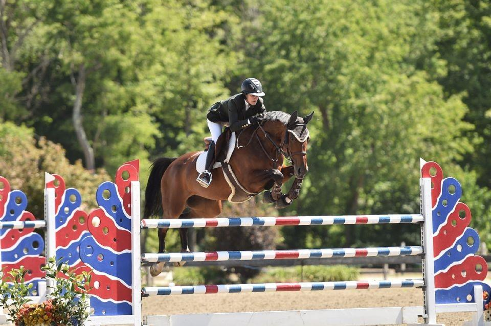 jennifer_kocher-usa-show_jumping_hall_of_fame_high_junior-amateur-owner_jumper_classic-miss_moneypenny-25th_annual_vermont_summer_festival-andrew_ryback_photography.jpg