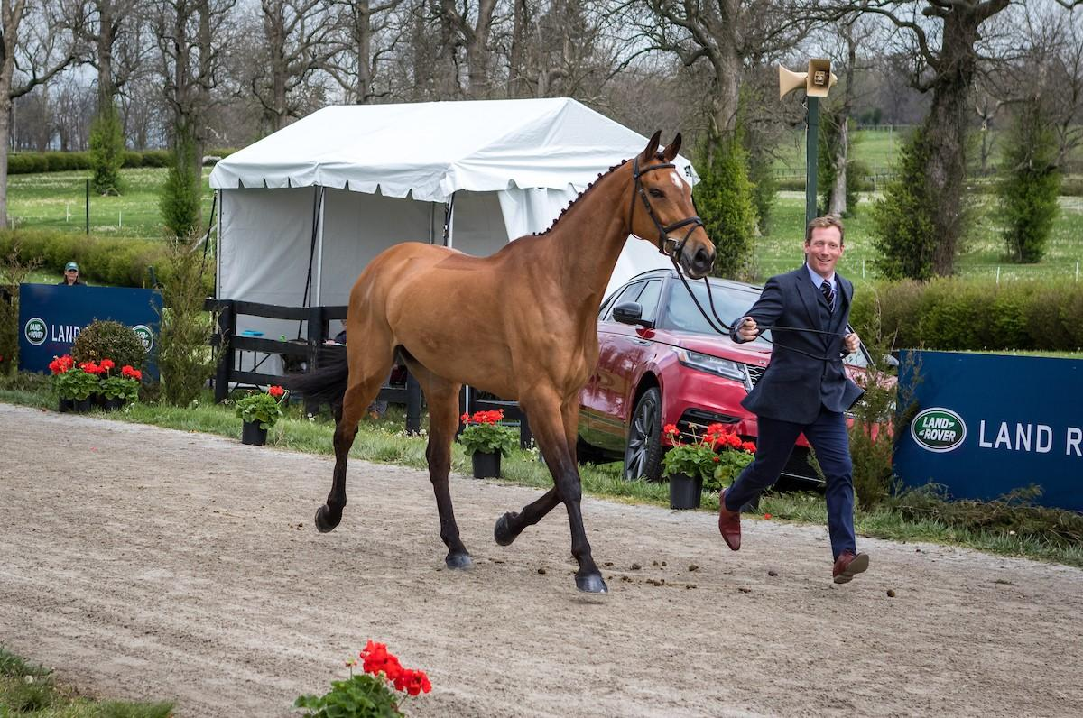 oliver-townend-and-cooley-master-class.jpg