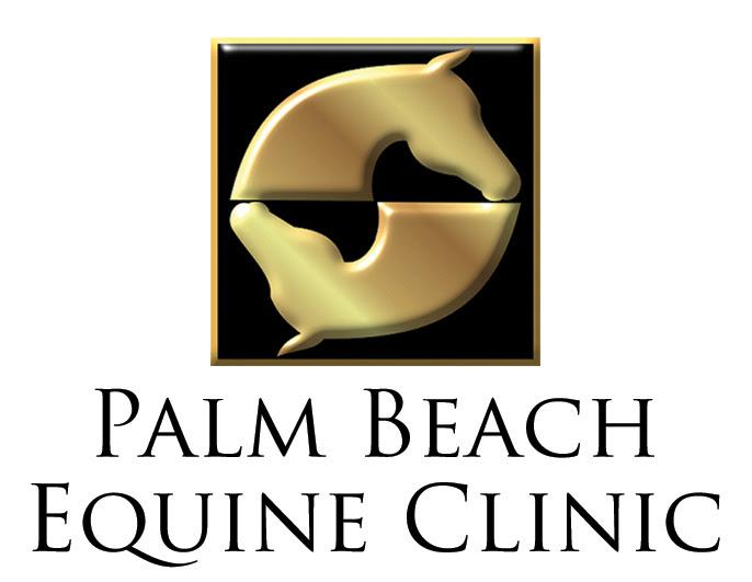 palm-beach-equine-logo.jpg