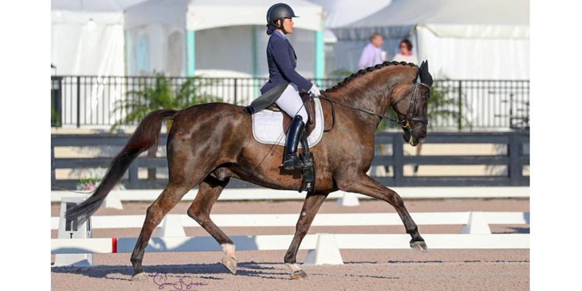 +Natalie Pai and Fritz San Tino in their winning Intermediate-I Test. ©SusanStickle.com_..jpg
