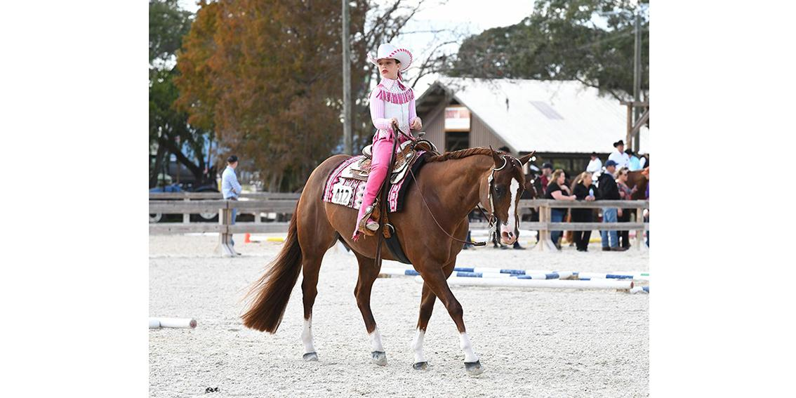 Alyvia Kladny-Dangerously Famous-FL Gold Coast QH Show-2020-TOP.jpg