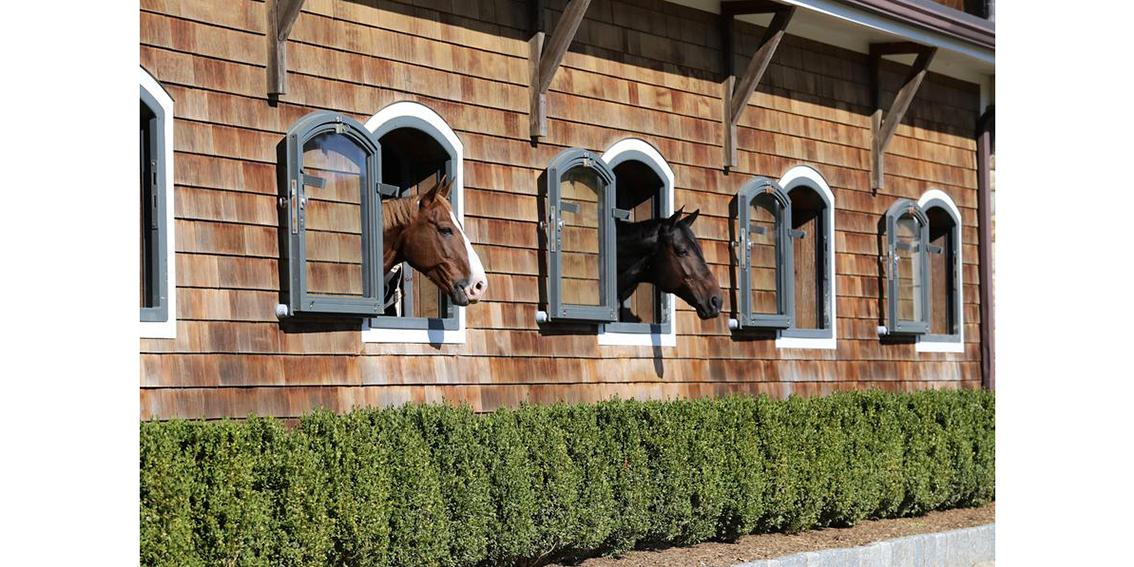 Boarding_Horses_at_Home_by_Jump_Media_900x-TOP.jpg