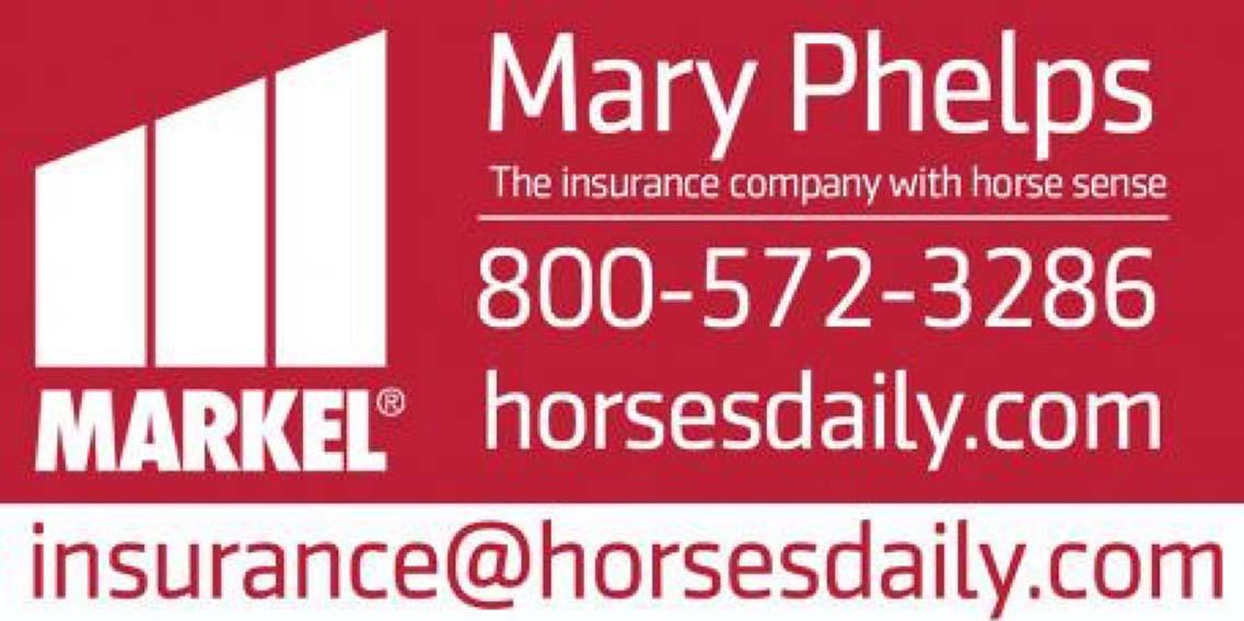 mary_phelps_3x8_banner_2018_v3_0-2.jpg