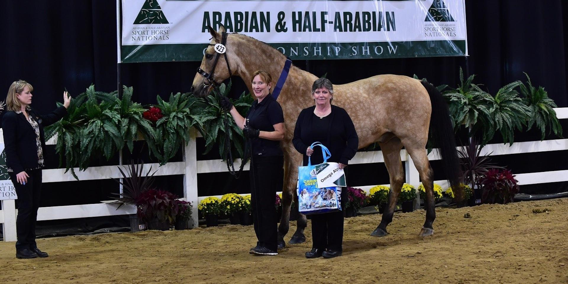omega_alpha_healthy_horse_award-akceptional-aha_sport_horse_nationals-2018.jpg