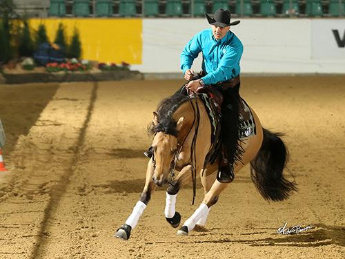 cody-sapergia-riding-made-in-walla-nrha-european-futurity-2015.jpg
