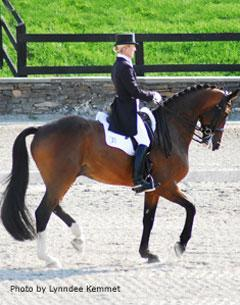 NEDA Fall Dressage Festival Starts on a Damp Note, Ends on ...