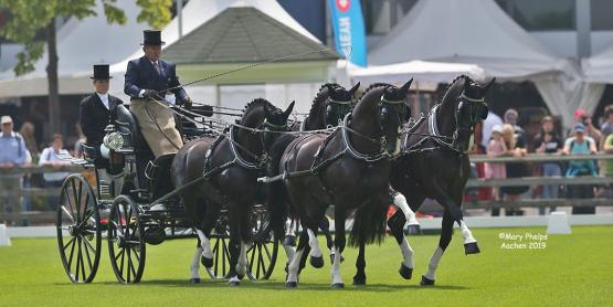 Boyd Excell to host FEI Driving World Championship four in hand 2020