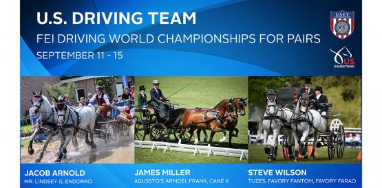 US Driving Team for 2019 FEI World Pairs