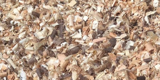 Black Walnut Shavings