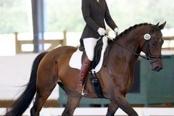 Dr. Ashlee Watts, US Dressage Finals, Adequan®